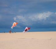 FUERTEVENTURA, SPAIN, NOVEMBER 08 2014, Kite Festival Royalty Free Stock Images