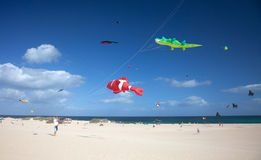 FUERTEVENTURA, SPAIN - NOVEMBER 09: Viewers watch from the ground as multicolored kites fill the sky at 27th International Kite F stock photo