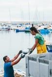 FUERTEVENTURA, SPAIN - OCTOBER 27: Fishermen unloading catch in Royalty Free Stock Image