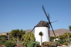 fuerteventura spain traditionell windmill Arkivbilder