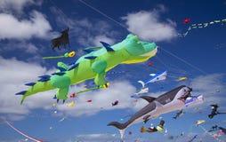 FUERTEVENTURA SPANIEN - NOVEMBER 10: Besökare tycker om härlig skärm av flygdrakar av på den 31. internationella drakefestivalen, royaltyfria foton