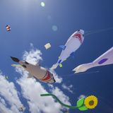 FUERTEVENTURA, SPANIEN - 10. NOVEMBER: Besucher genießen schöne Anzeige von Fliegendrachen an des 31. internationalen Drachen-Fes lizenzfreies stockbild