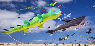 FUERTEVENTURA, SPANIEN - 10. NOVEMBER: Besucher genießen schöne Anzeige von Fliegendrachen an des 31. internationalen Drachen-Fes stockbilder
