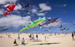 FUERTEVENTURA, SPANIEN - 10. NOVEMBER: Besucher genießen schöne Anzeige von Fliegendrachen an des 31. internationalen Drachen-Fes lizenzfreie stockfotos