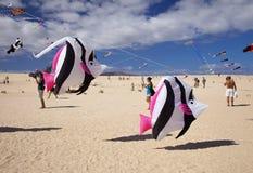 FUERTEVENTURA, SPANIEN - 10. NOVEMBER: Besucher genießen schöne Anzeige von Fliegendrachen an des 31. internationalen Drachen-Fes stockfotos
