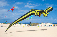 FUERTEVENTURA, SPANIEN am 8. November 2014 Drachen-Festival Stockfotografie