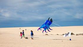 FUERTEVENTURA, SPANIEN am 8. November 2014 Drachen-Festival Lizenzfreies Stockbild