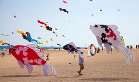FUERTEVENTURA, SPANJE, 08 NOVEMBER 2014, Vliegerfestival Royalty-vrije Stock Fotografie