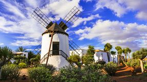 Fuerteventura - traditional windmill in Antigua village. Canary islands. Traditional windmill and palm trees in Antigua village,fuerteventura island,Spain stock photo