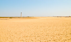 Fuerteventura. Wide Morro Jable beach Royalty Free Stock Photo