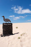 Fuerteventura, Canary Islands, Spain Royalty Free Stock Image