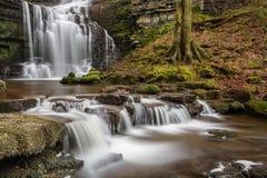Fuerza hermosa de Scaleber de la cascada de Yorkshire en arbolado pacífico Fotografía de archivo