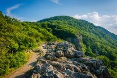A fuga apalaches na cimeira de penhascos rochosos pequenos do homem, Foto de Stock