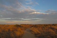 Fuga através do Bolsa Chica Ecological Preserve & pantanais no Huntington Beach, Califórnia Imagem de Stock