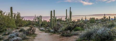Fuga calma da paisagem e de caminhada do nascer do sol do Arizona foto de stock