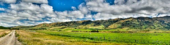 Fuga central do trilho de Otago Fotografia de Stock Royalty Free