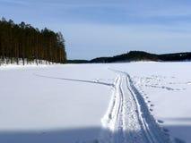 Fuga coberto de neve Fotografia de Stock