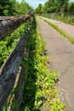 Fuga coberto de vegetação abandonada da bicicleta com a cerca de madeira rotting Fotografia de Stock Royalty Free