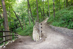A fuga da floresta, a estrada viajou menos por Robert Fr Imagens de Stock