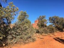 Fuga da rocha de Sedona o Arizona Bell Foto de Stock