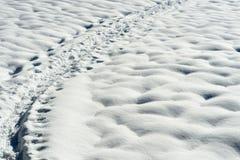 Fuga da sapata da neve Fotografia de Stock