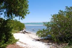 Fuga de caminhada à baía de Sarasota imagem de stock