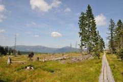 Fuga de caminhada Imagens de Stock Royalty Free