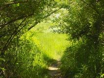Fuga de caminhada coberta imagens de stock