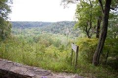 fuga de caminhada da floresta Fotos de Stock Royalty Free