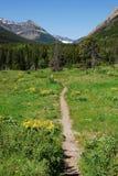 Fuga de caminhada da montanha Imagem de Stock