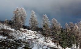 Fuga de caminhada do inverno Foto de Stock Royalty Free