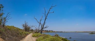 Fuga de caminhada e pantanal de Califórnia Imagens de Stock Royalty Free