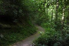 Fuga de caminhada em montanhas fumarentos Foto de Stock Royalty Free