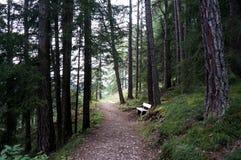 Fuga de caminhada maravilhosa e idílico no mais forrest/dolomites/para o sul Tirol Imagem de Stock Royalty Free