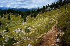 Fuga de caminhada maravilhosa em cume de siusi em Val Gardena/para o sul em Tirol/Italia Imagens de Stock Royalty Free