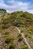 Fuga de caminhada na borda da cratera de Bandama, Gran Canaria imagem de stock royalty free