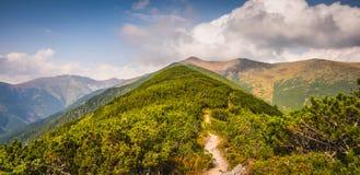 Fuga de caminhada nas montanhas Fotos de Stock Royalty Free