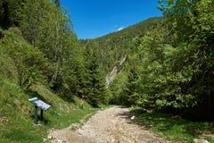 Fuga de caminhada nas montanhas Imagens de Stock
