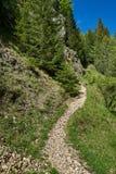Fuga de caminhada nas montanhas Foto de Stock Royalty Free