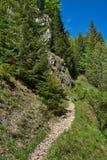 Fuga de caminhada nas montanhas Foto de Stock