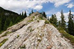 Fuga de caminhada no cume da montanha Fotografia de Stock