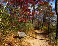 Fuga de caminhada no outono Imagens de Stock Royalty Free