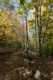 Fuga de caminhada no parque nacional do Acadia foto de stock royalty free