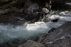 A fuga de Jenny Lake fornece córregos e pontes de todas as formas e tamanhos enquanto atravessa o assoalho do Tetons grande Fotografia de Stock