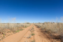 Fuga de Kalahari imagem de stock