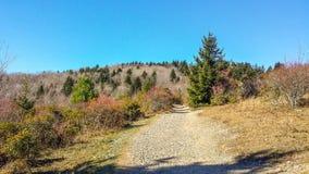 Fuga de Massie Gap em Grayson Highlands fotos de stock royalty free