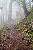 Fuga de montanha. Imagem de Stock