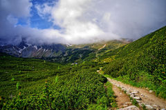 Fuga de montanha Fotos de Stock Royalty Free