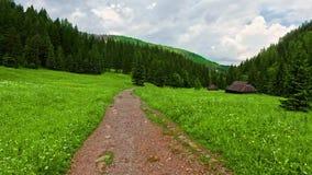 Fuga de montanha nas montanhas de Tatra no vale de Jaworzynka no verão video estoque