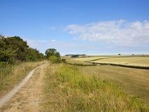 Fuga de natureza de Kiplingcotes com uma paisagem do verão dos retalhos Fotos de Stock